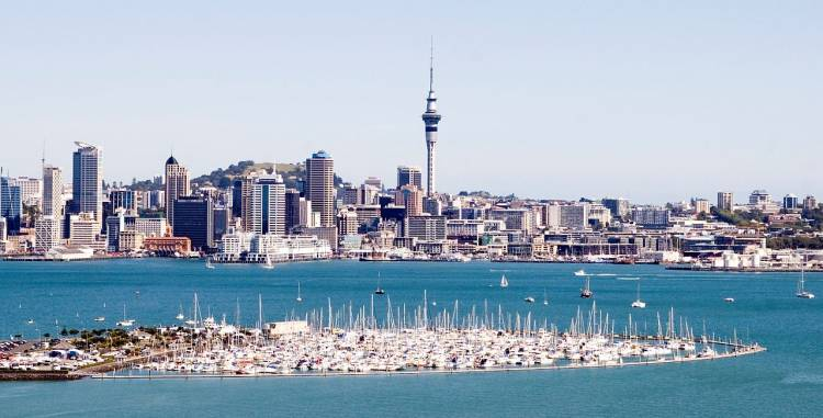View across Auckland Harbor to the city.