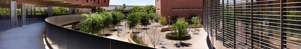ASU Carey to Launch New Master of Science in Management (MiM) Program