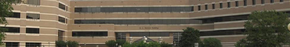 Texas A&M - Mays to Launch a Master of Science in Business