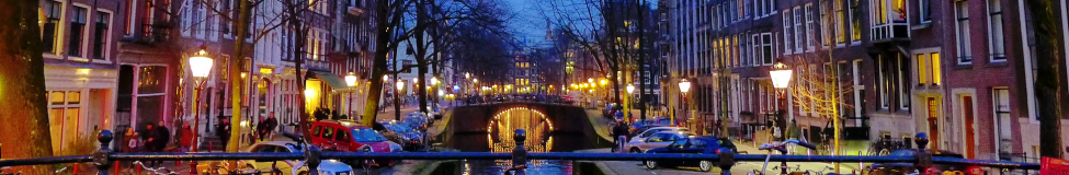 Going Dutch: MBA Programs in the Netherlands