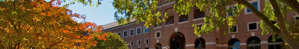 UNC Announces STEM-Designated MBA Concentration in Business Analytics