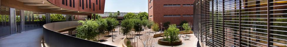 ASU - Carey Launches New MBA Program