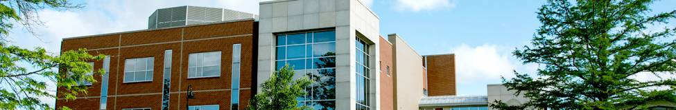 Utica College - Online MBA