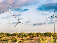 Application Deadline for Stanford Course in Environmental Sustainability