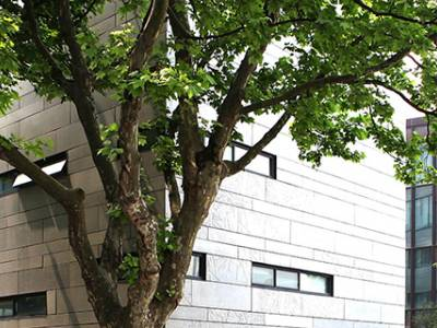 AACSB Accreditation Awarded to Nine Business Schools