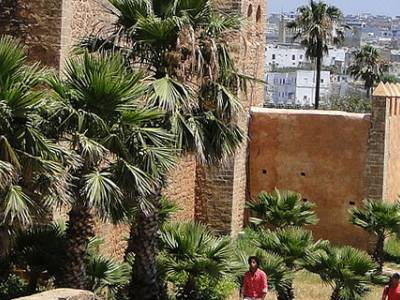 ESSEC to Open New Campus in Morocco