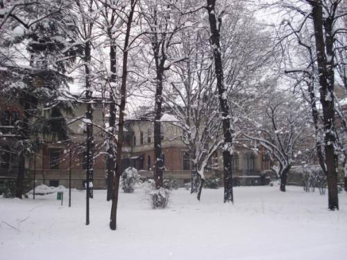 Our B-School under the snow