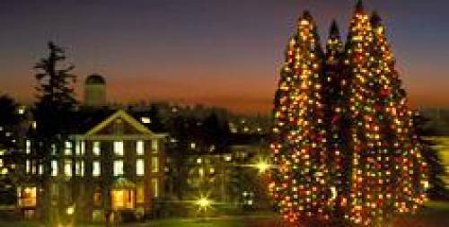 Willamette University and Star Trees during the holidays