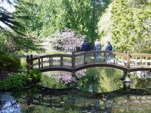 Bridge leading into the Japanese gardens