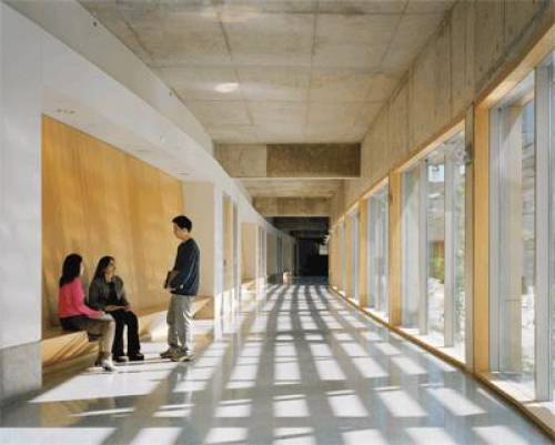 Throughout the complex, on all floors, oversize glass panels allow natural light to flood hallways, communal space, the library and offices.